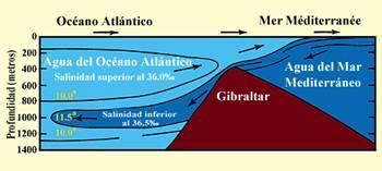 Figura 13 (Amplificada)